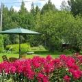 elokuun puutarha